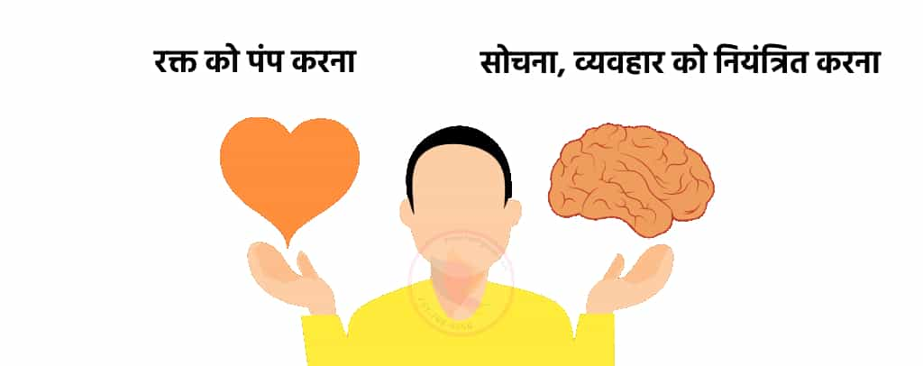 Thinking is by brain