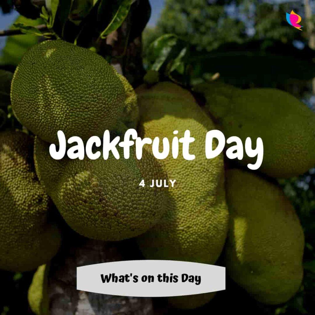 jackfruit-divas