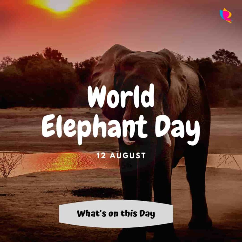 12_august_world_elephant_day