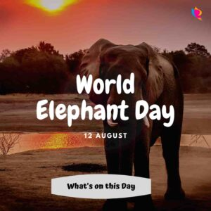 12_august_world_elephant_day
