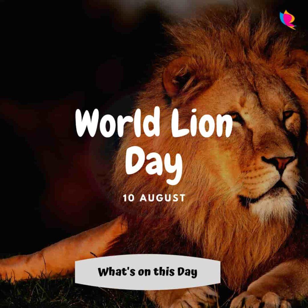world lion divas