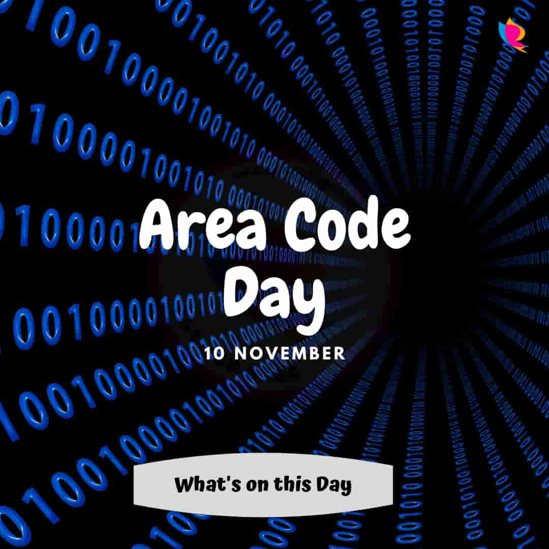 10. area_code_day