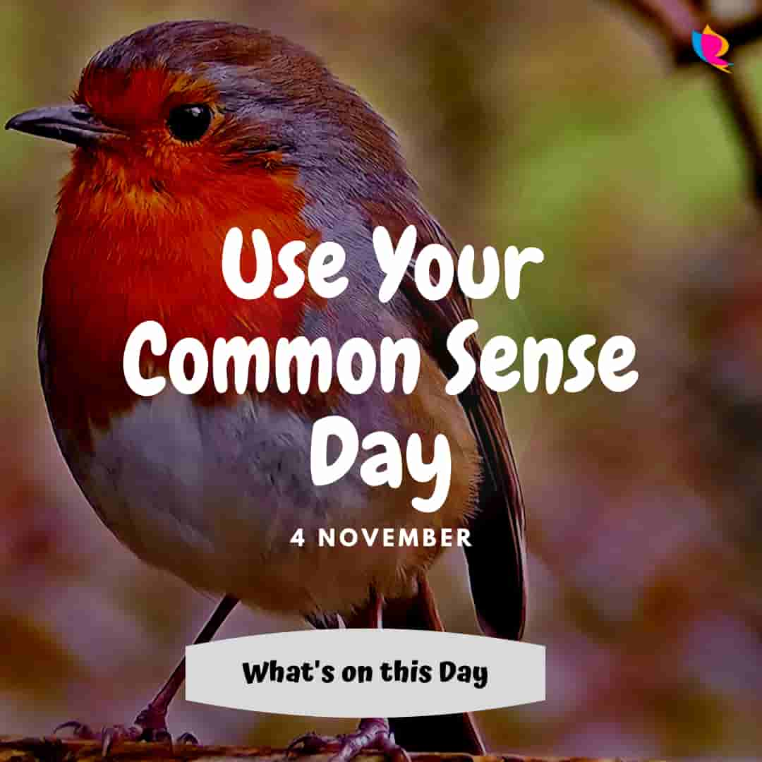 use-your-common-sense-day