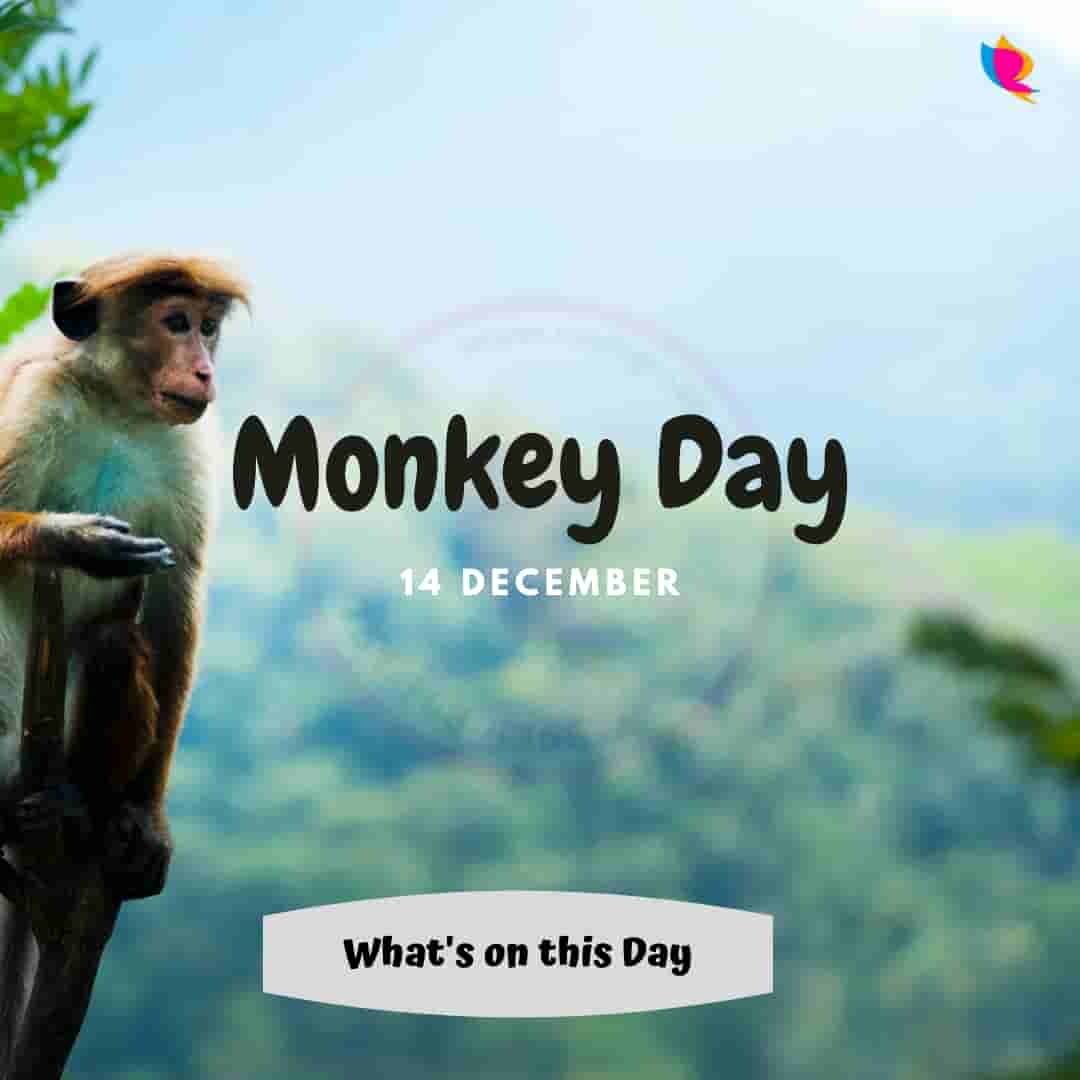 Monkey Day