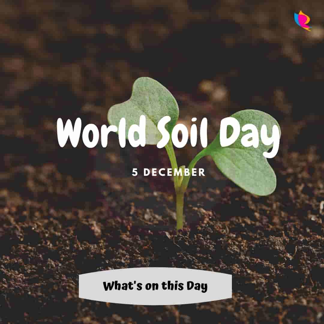 5 World Soil Day
