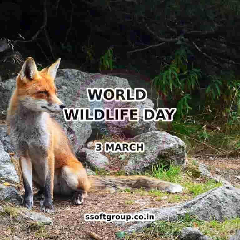 World-Wildlife-Day